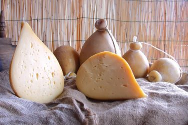forenza caciocavallo cheese caciocavallo cheese cow milk latteria salvia maria farm basilicata lucanian