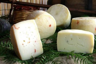 cow cheese cheese cow cheese caggiano farm basilicata lucanian