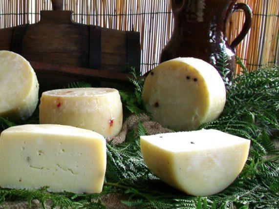 truffle cow cheese cheese cow cheese caggiano farm basilicata lucanian
