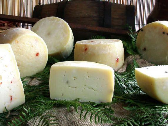 cow cheese pepper and sage cow cheese caggiano farm basilicata lucanian