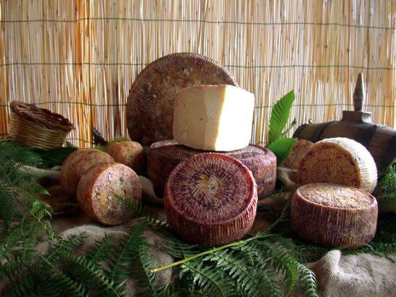 pecorino di filiano dop formaggio di pecora formaggio latte di pecora azienda agricola caggiano certificazione dop basilicata lucania