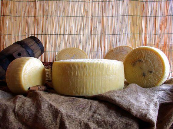 forenza pecorino cheese sheep cheese cheese sheep milk caggiano farm basilicata lucanian