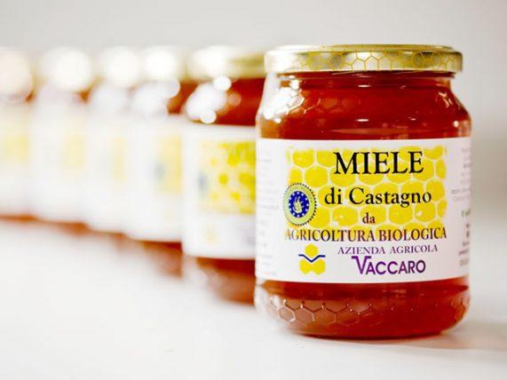 miele bio di castagno miele biologico miele bio castagno azienda agricola vaccaro basilicata lucania