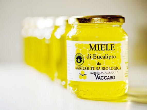 miele bio di eucalipto miele biologico miele bio eucalipto azienda agricola vaccaro basilicata lucania