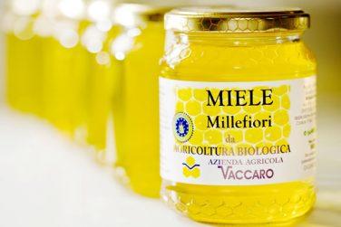 miele bio di millefiori miele biologico miele bio millefiori azienda agricola vaccaro basilicata lucania