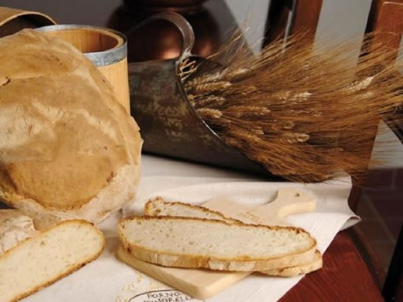 durum wheat flour bread fresh bread palese backery basilicata lucanian