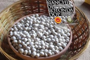 rotonda pdo white beans white beans pdo beans rossato sira farm italian beans basilicata lucanian